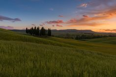 Val d'Oorcia at sunset - null