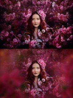Shooting Through Blossom Overlays - Kimla Designs
