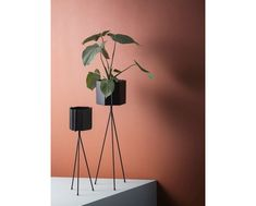ferm LIVING Plant Stand Grey is part of Scandinavian Home Accessories Plants Purchase the latest range of Ferm Livings contemporary and minimalist plant stands in grey These plant stands are made o - Ferm Living Plant Stand, Marsala, Modern Plant Stand, Plant Stands, Black Plant Stand, Modern Planters, Scandinavian Home, Interior Inspiration, Colour Inspiration