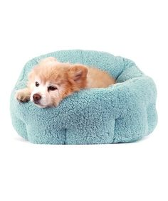 Another great find on #zulily! Teal Best Friends Orthocomfort Deep Dish Pet Bed #zulilyfinds