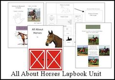 All About Horses Lapbook Unit #homeschool #lapbooking