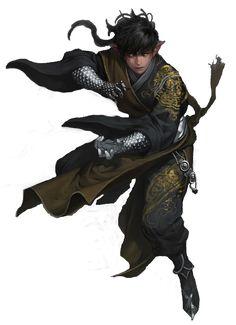 m Half Elf Monk