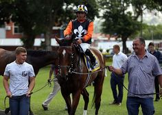 Summerhill Race Results: Greyville Polytrack 08/03/15  Race 4: MR 86 DIVIDED HANDICAP Open 2000m  Winner: DOUBLE CLUTCH Stronghold (GB) x Incremental (Northern Guest (USA))  Bred By: Mr D K Martin.   Gold Circle Photo  www.summerhill.co.za
