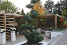 Garden Inspiration, Garden Ideas, Air B And B, Outdoor Living, Outdoor Decor, Backyard Landscaping, Pergola, Outdoor Structures, Landscape