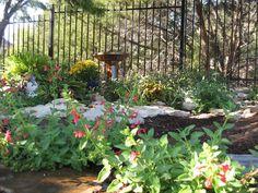 53 Best Texas Shade Garden Images Shade Garden Garden Texas