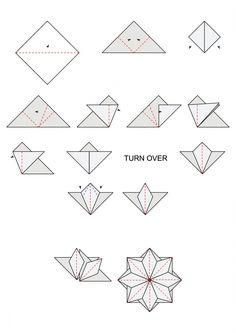 Terrific Origami Star Flower Diagram Origami Pinterest Wiring Diagram Database Wiring 101 Breceaxxcnl