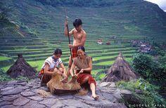 Banaue by Guide Viaggi, via Flickr