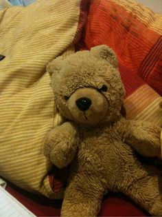 Lost on 08/04/2015 @ salzburg austria. Lost bear if found or have exact bear please email below Visit: https://whiteboomerang.com/lostteddy/msg/mg5df2 (Posted by Shane on 08/04/2015)