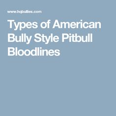 Types of American Bully Style Pitbull Bloodlines