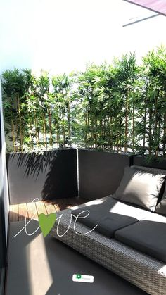 Built In Garden Seating, Backyard Seating, Bamboo Hedge, Bamboo Plants, Green Terrace, Terrace Garden, Small Balcony Design, Apartment Plants, Outdoor Privacy