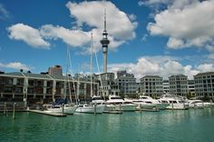 Auckland HArbour, New Zealand. Auckland, Wellington City, The Beautiful Country, South Island, Small Island, Capital City, Lonely Planet, Homeland, Dream Vacations