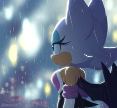 Shadow The Hedgehog, Sonic The Hedgehog, Sonic Fan Art, Rain Animation, Shadow And Rouge, Rouge The Bat, Sonic Franchise, Sonic Heroes, Sonic Fan Characters