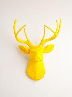 The Pablo | Yellow Deer Head