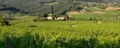Viticcio from the hills..