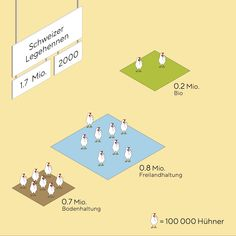 Motion Design, Laying Hens, Html, Infographic, Playing Cards, Behance, Animation, Marketing, Studio