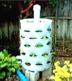 Delightful Iu0027m Planning A Small Space Garden. 55 Gallon Drum Planter Idea Is The