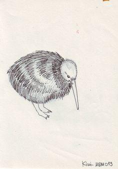 kiwi. awww, its so fluffy and cute
