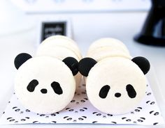"Playful ""Party Like a Panda"" Birthday Party"