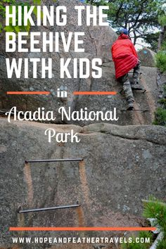 The Beehive Hike in Acadia National Park is a fabulous family adventure, if your kids are up for a challenge and aren't scared of heights and rock scrambling. The short, mile hike climbs to the summit of the Beehive and provides 360 degree views of Ac Hiking With Kids, Travel With Kids, Family Travel, Family Trips, Big Family, Family Vacations, Acadia National Park Hiking, National Parks Usa, Family Adventure