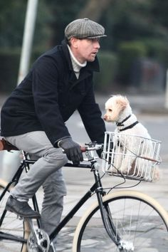 Ewan MacGregor on his dapper bike with a dog in the basket.  You're killing me!