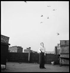 Mickey with pigeons, Fotografía: Stanley Kubrick. Stanley Kubrick, Reggio Emilia, Cool Photos, Louvre, Black And White, City, Photography, Travel, Design
