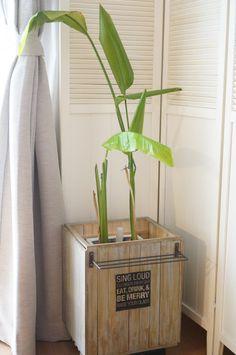 100均フォトフレームとすのこDIY!可動式植木鉢カバー作り