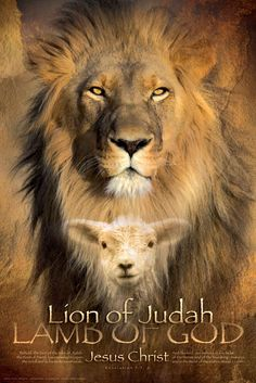 Christian wall art showing the Lion of Judah and the Lamb of God. This christian wall art helps you know Jesus Christ. Tribe Of Judah, Christian Posters, Christian Art, Christian Paintings, La Salette, Lion Poster, Print Poster, Art Print, Poster Poster