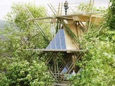 """Projeto de hotel sustentável feito com bambu  Data: 12/11/2015  O projeto deste hotel foi feito pelo escritório de arquitetura Penda, na China, e foi chamado de """"One With the Birds"""" ou """"Um Com os Pássaros"""", devido ao conceito de integração com a natureza, simulando a vida no meio das árvores.  Ele foi criado para um concurso, com quatro premissas principais: Sustentabilidade, flexibilidade e conforto.  A sustentabilidade veio do uso do bambu, recurso natural facilmente renovável"""
