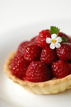 So completely pretty and bursting with juicy flavour! Fresh Raspberry Tarts.