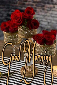 you are searching for good morning beautiful massages. The best image is available on this website to wish you good morning. Good Morning Roses, Good Morning Tuesday, Cute Good Morning, Good Morning Picture, Morning Msg, Happy Sunday, Morning Qoutes, Morning Greetings Quotes, Good Morning Messages