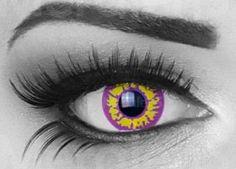 Purple Wolf lenzen