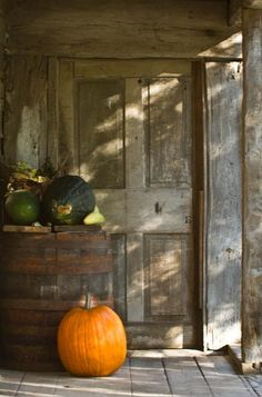 The pumpkin really pops with the weathered wood!!!