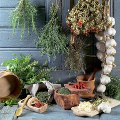 Drying Herbs and Spices