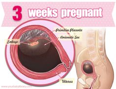 There's a whole lotta science goin' on when you're 3 weeks pregnant!