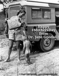 Hope that's water Dr. Jane is dousing that little bugger with from the Jerry can! Land Rover Series 3, Land Rover Defender 110, Offroad, Land Rover Models, Kombi Home, Best 4x4, Expedition Vehicle, Land Rover Discovery, Car Brands