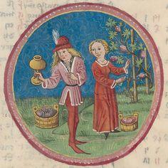 Labors of the month: September - Codex Schürstab, Nürnberg (Germany), 15th century.  Zürich, Zentralbibliothek, Ms. C 54, p. 14r – Codex Schürstab (www.e-codices.unifr.ch/en/zbz/C0054/14r)