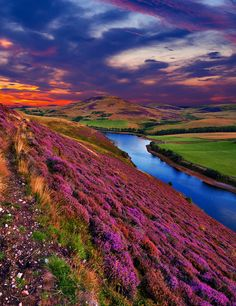 Pentland hills, near Edinburgh, Scotland