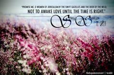 <3 Song of Solomon 2:7