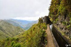 Levada, Madeira Island, Portugal    http://caminhadasnaminhaterra.blogspot.com/