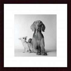 Amanda Jones 'Max & Roxie' Framed Art Print
