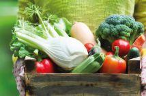 10 Vegetais da primavera: economize e mantenha a forma