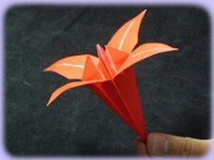 This video is good.  For some reason the howcast lily would not pin but I am adding the link....    http://www.howcast.com/videos/330-How-To-Make-an-Origami-Lily