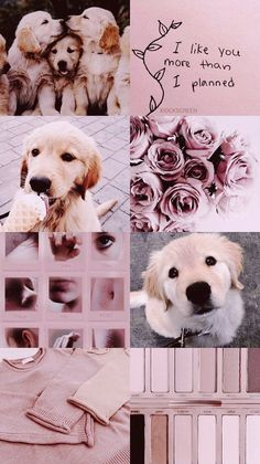 Wallpaper iphone pink dog 36 Ideas for 2019 Aesthetic Pastel Wallpaper, Trendy Wallpaper, Tumblr Wallpaper, Cute Wallpapers, Floral Iphone Case, Pink Iphone, Aesthetic Colors, Aesthetic Collage, Dog Wallpaper Iphone