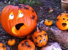 Creepy Crawling Jack-o-Lanterns.  :-)