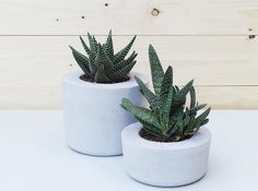 $24.19 Modern decorative accessory for your home ideal for succulents and cacti.  //Concrete planter