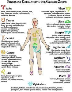 Medical Astrology, Learn Astrology, Astrology And Horoscopes, Astrology Numerology, Astrology Chart, Astrology Zodiac, Zodiac Facts, Zodiac Signs, Virgo