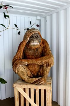 Paper Mache Art.....got 2 have a monkey in the bar.....I know its not 1 but close
