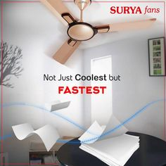 21 Best Surya - Home Appliances images in 2018 | Home
