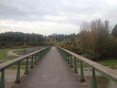 Ballade dans la partie Annecy-Ouest du canton avec ici le vallon du Fier, samedi 25 octobre 2014.