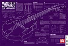 Mandolin Anatomy and Mechanics Wall Chart